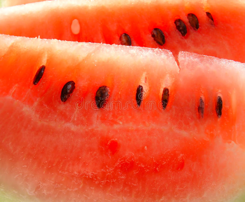 Download Water-melon stock image. Image of piece, juicy, pulp - 10557861