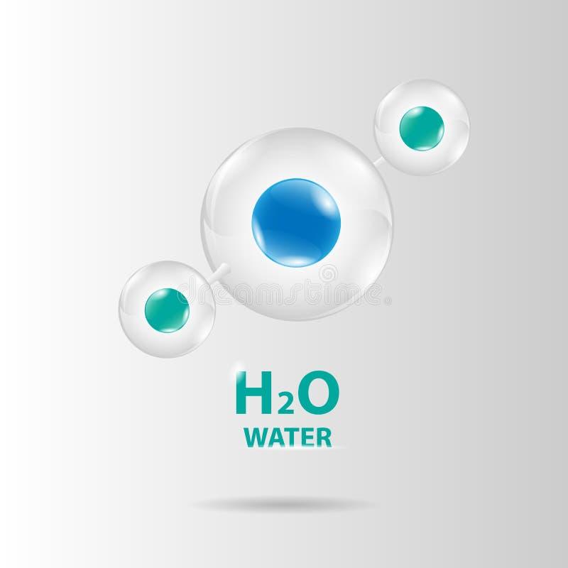 Water molecule model vector. Water cell molecule model vector vector illustration