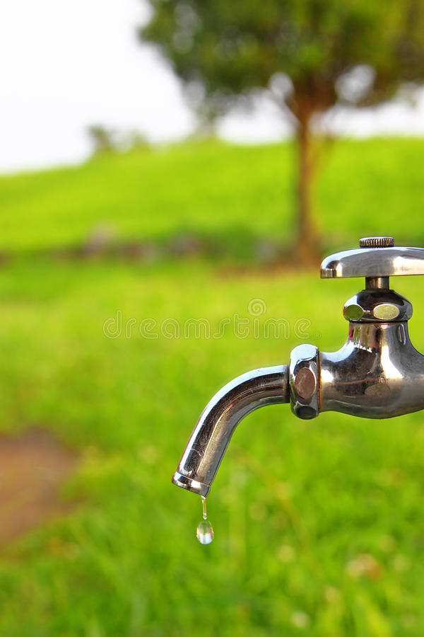 Water and Nature royalty free stock photo