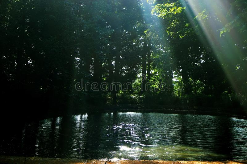 Water, Nature, Green, Reflection royalty free stock images
