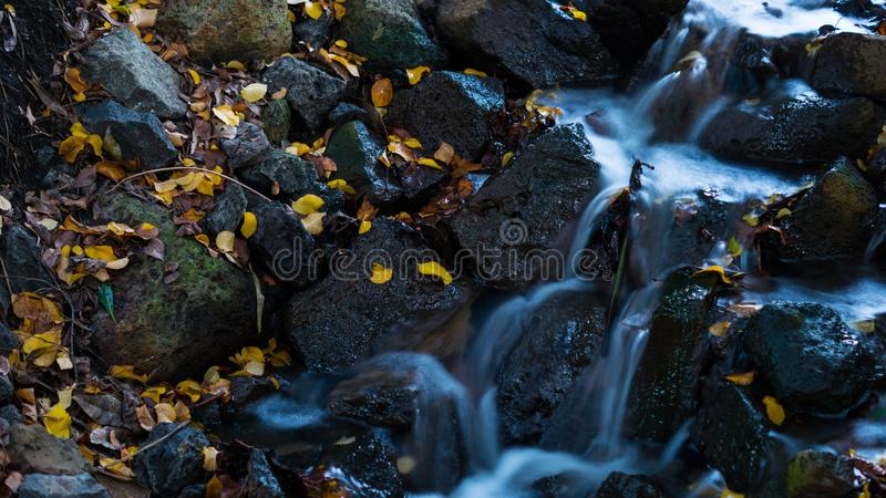 Water, Nature, Rock, Stream stock images