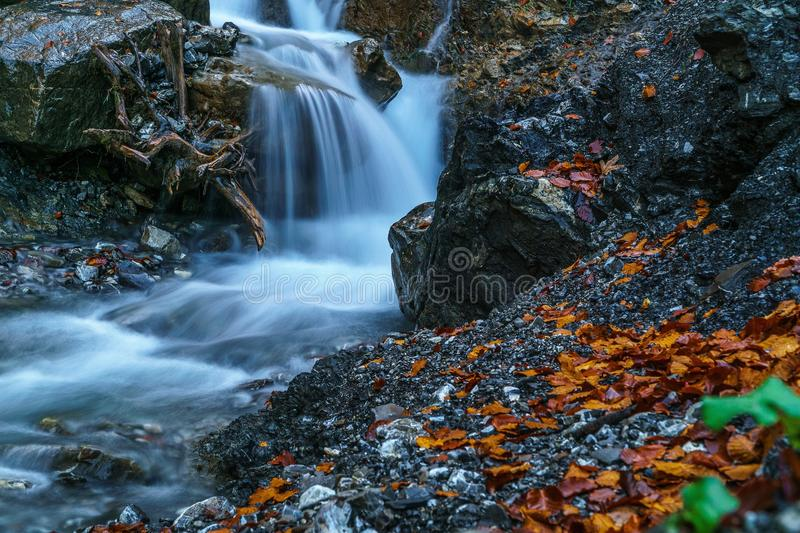 Water, Nature, Stream, Body Of Water royalty free stock images
