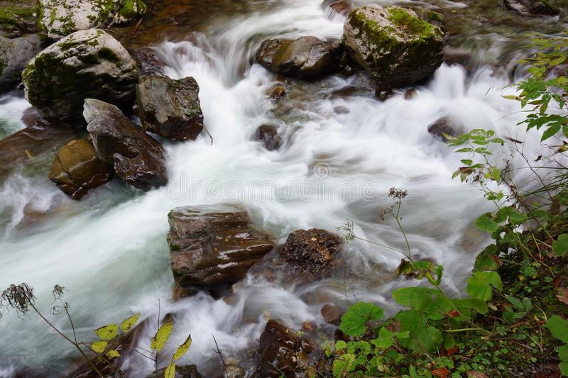 Water, Nature, Stream, Body Of Water stock images