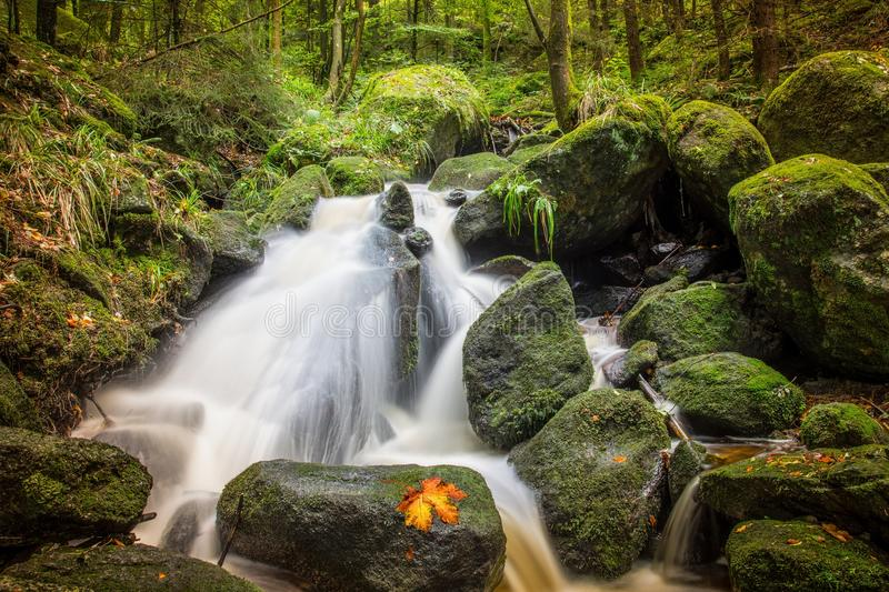 Water, Nature, Waterfall, Stream royalty free stock images