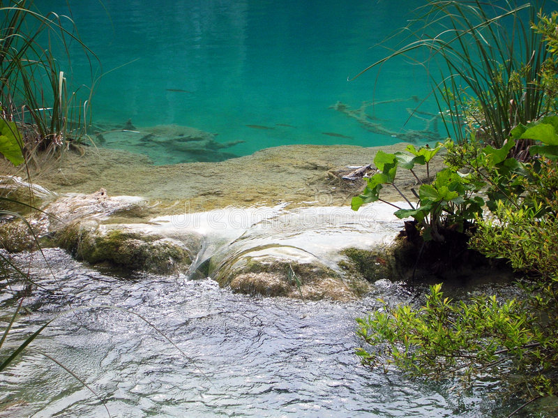 Water in Plitvice lake. A close up of emerald water lake in Plitvice national park royalty free stock photos