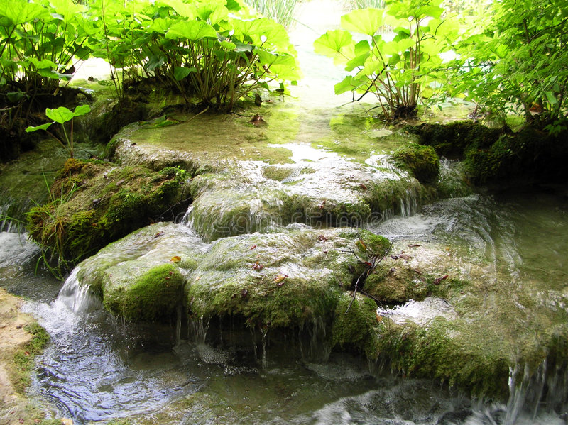 Water in Plitvice park. Water and green in Plitvice park, Croatia royalty free stock photography