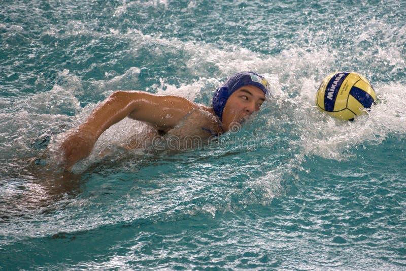 Water Polo Action stock photos