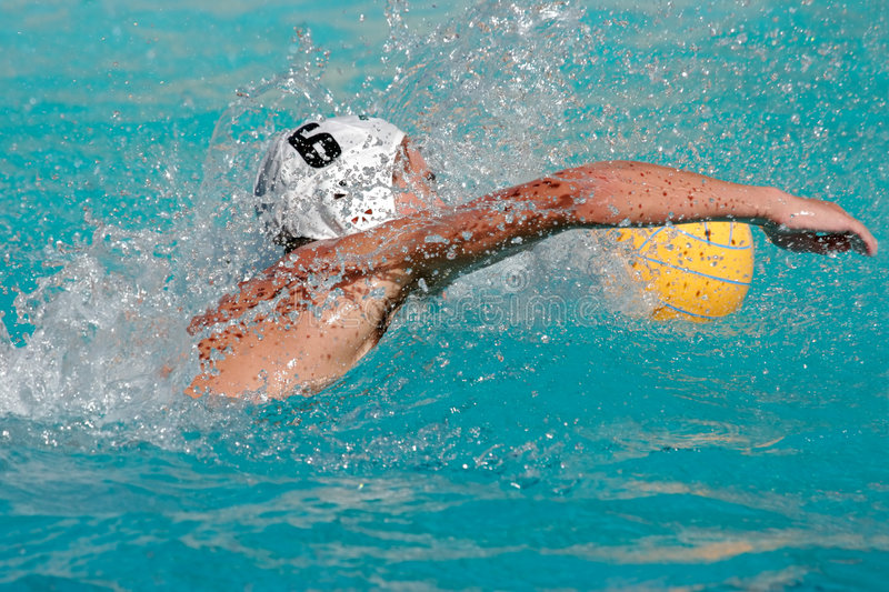 Water polo player. Swimming for the ball royalty free stock photo