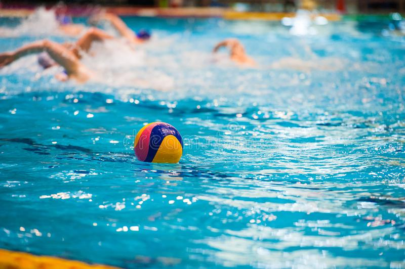 Water polo players. Water polo action in a swimming pool royalty free stock photo