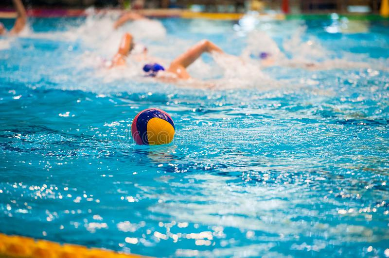 Water polo players. Water polo action in a swimming pool royalty free stock photos