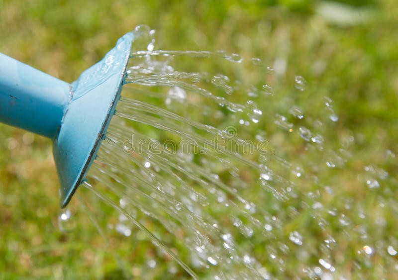 Water pouring from a watering can stock photography