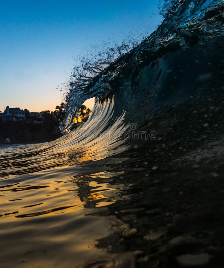 A curling wave with Palm Trees in Laguna Beach, California. An in the water POV of a curling shorebreak wave in Laguna Beach, California stock photo