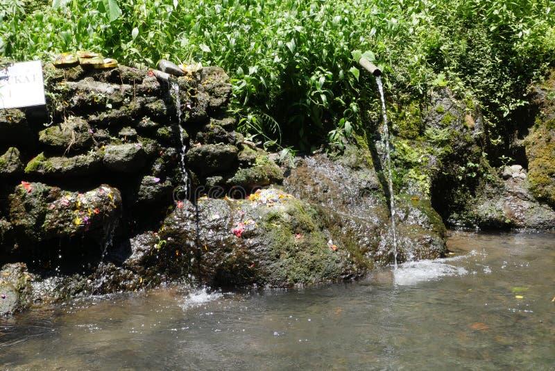 картинки ритуала очищения воды вкуса при использование