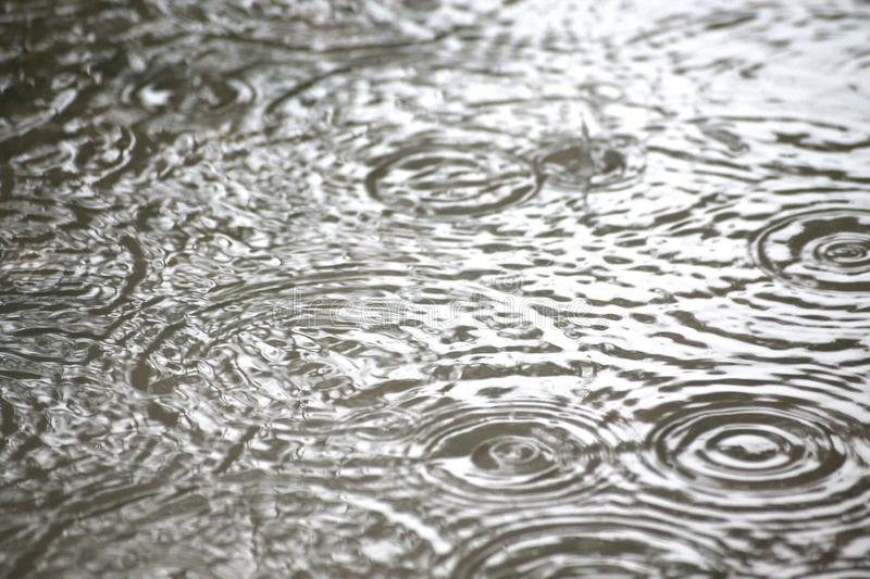 Water of the rain royalty free stock image