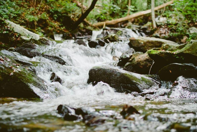 Water Rapids In Stream Free Public Domain Cc0 Image