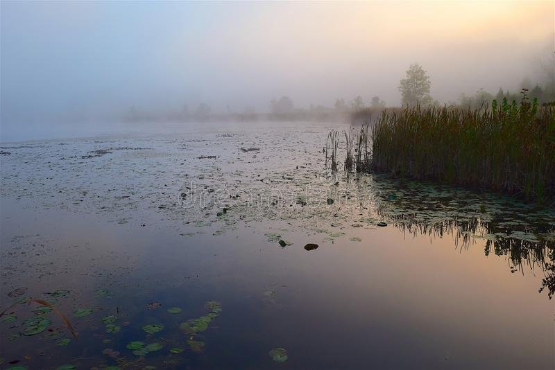 Water, Reflection, Mist, Fog royalty free stock photos