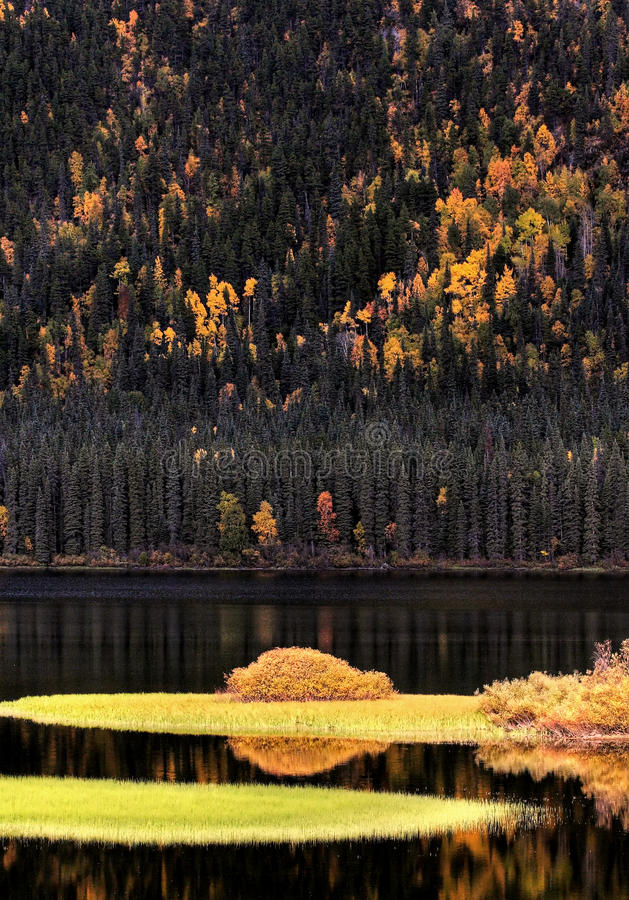 Download Water Reflections In Autumn Stock Photo - Image: 14857790
