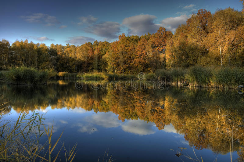 Download Water reflections in fall stock photo. Image of forests - 11632158