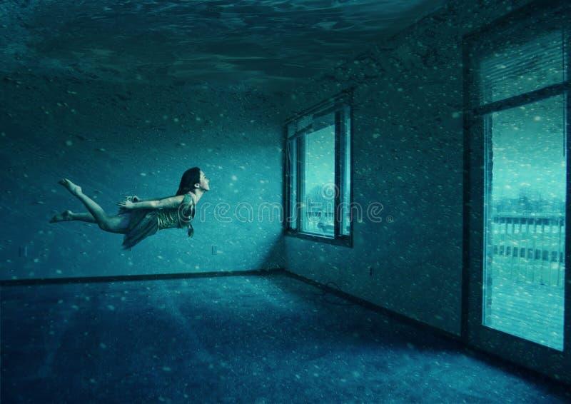 Download Water room stock illustration. Illustration of diver - 16113904