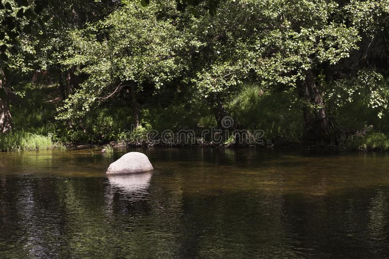 Water running slow and calm down a river royalty free stock photo