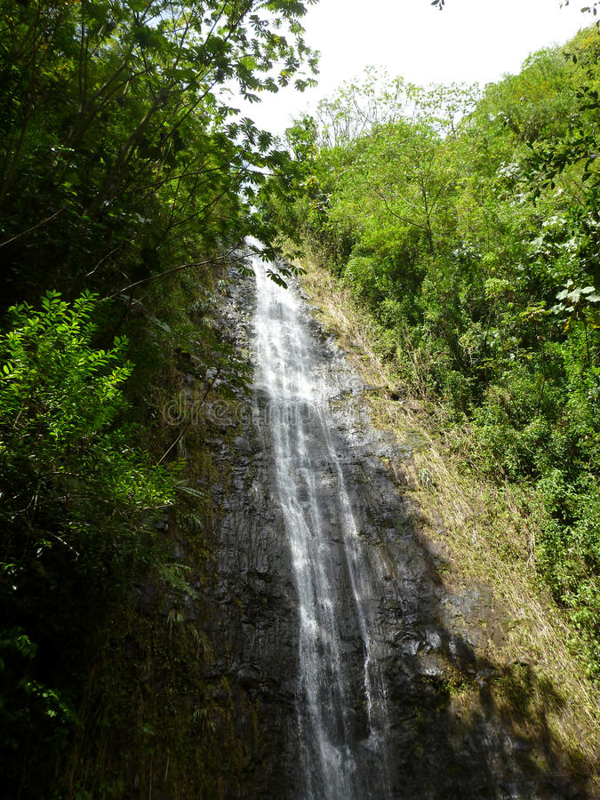Water runs down Manoa Falls waterfall royalty free stock image