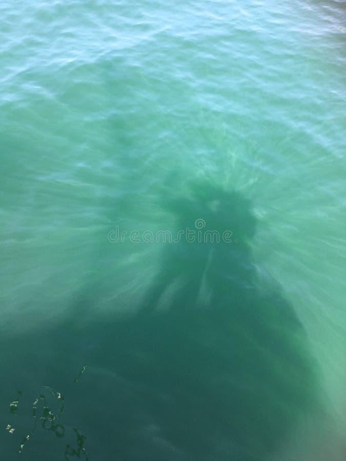 Water shadow: La comunión tiene sombra. stock image