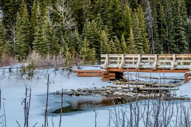 Mount Lorrett Ponds, Bow Valley Wilderness Area Area, Alberta, Canada. Water shows it`s first glimpse as spring ha sprung near the bridge at the ponds stock photo