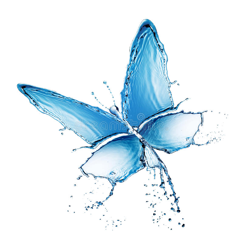 Download Water Splash Buttefly Isolated Stock Image - Image: 23080457