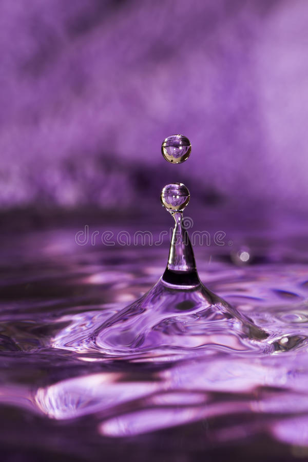 Water splash with drops on dark purple background.  stock photo