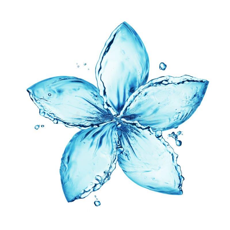 Water splash flower. Abstract illustration of water splash in shape of flower, white background royalty free stock photo