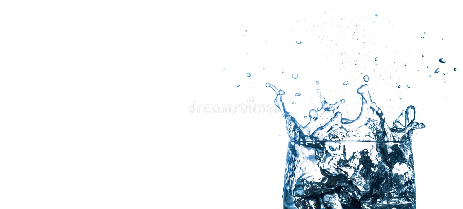 Water splashes. Falling ice cubes into glass isolated on white background. Free space for text royalty free stock photography