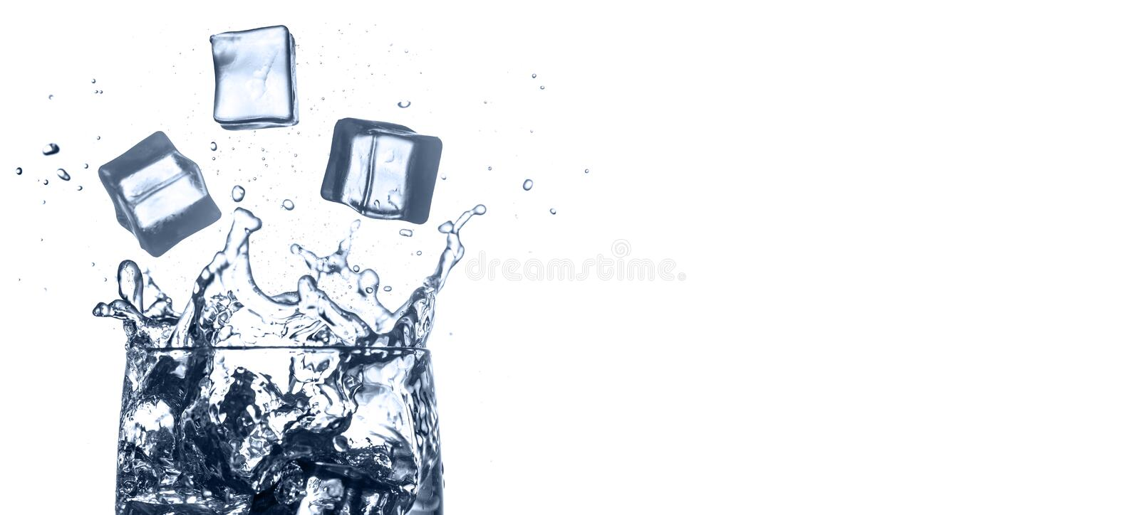 Water splashes. Falling ice cubes into glass isolated on white background. Free space for text royalty free stock images