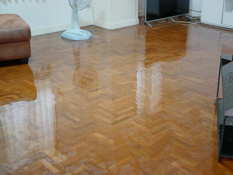 Water spreading / flooding on living room parquet floor in a house - damage caused by water leakage.  royalty free stock images