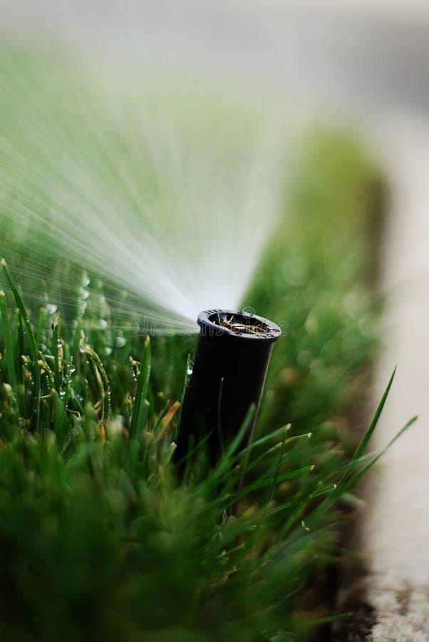 Water sprinkler stock photo