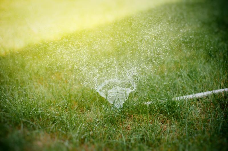 Water sprinkler in action. On a hot summer day stock illustration
