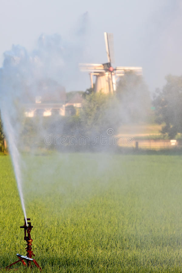 Water sprinkler system irrigating land. With a Dutch windmill in the background royalty free stock photography