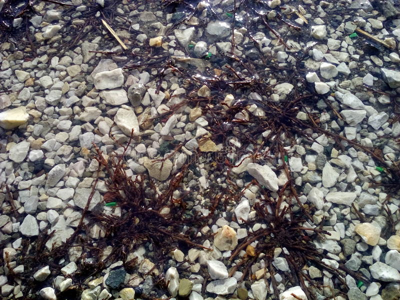 Water and stones royalty free stock images