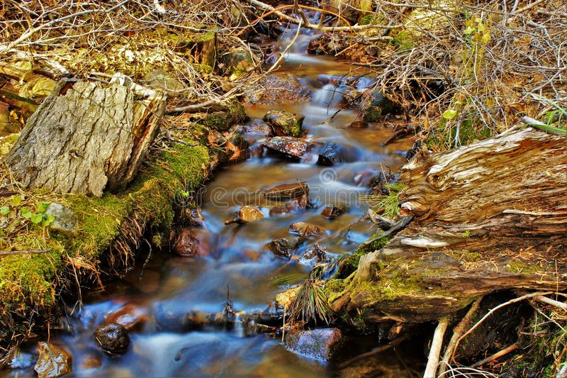 Water Stream on Creeks stock images