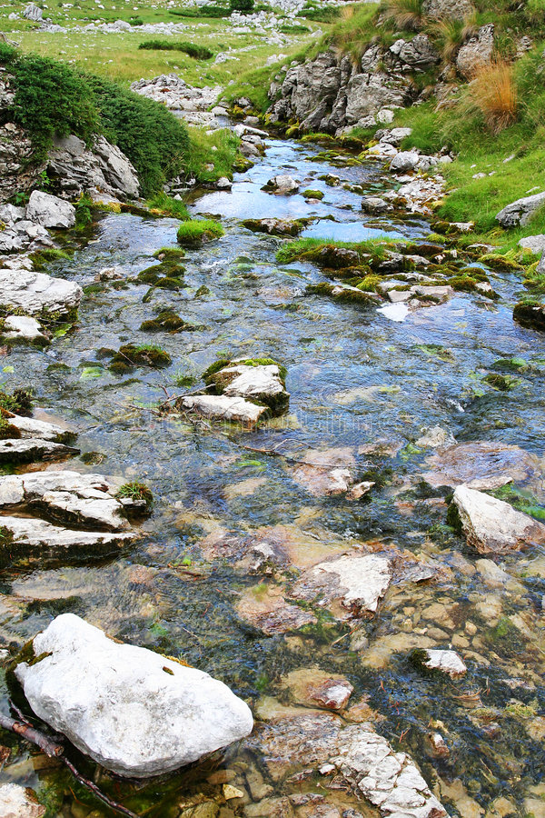 Water stream in nature stock images
