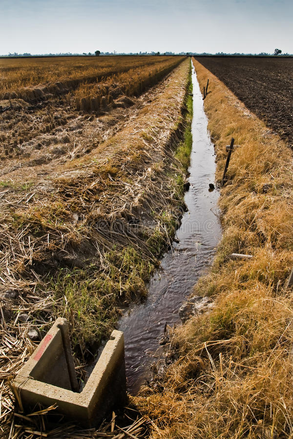 Download The water Supply stock image. Image of burn, field, harvest - 13850651