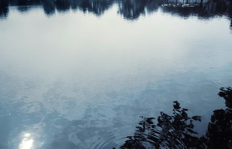Water surface with ripples and sunlight reflections royalty free stock photography