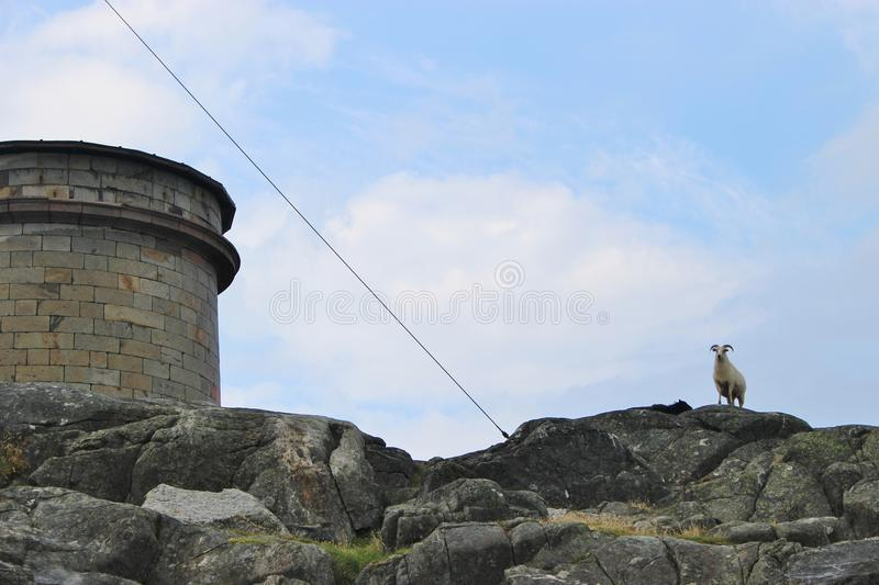 Water-tank and aries on the island Utsira, Norway. High on the rocks of Utsira. Utsira is a small island in the North Sea, about 18 kilometers West of Haugesund royalty free stock photography