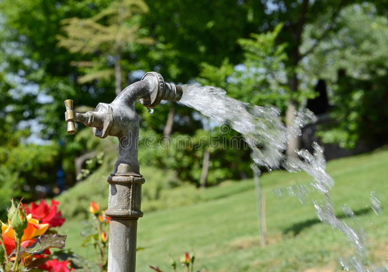 Download Water tap stock image. Image of water, flowing, green - 24930113