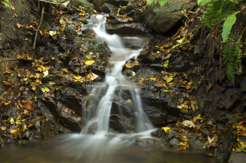 Water van het leven royalty-vrije stock afbeelding