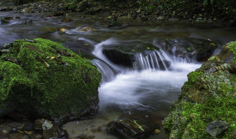 Water van het leven stock foto