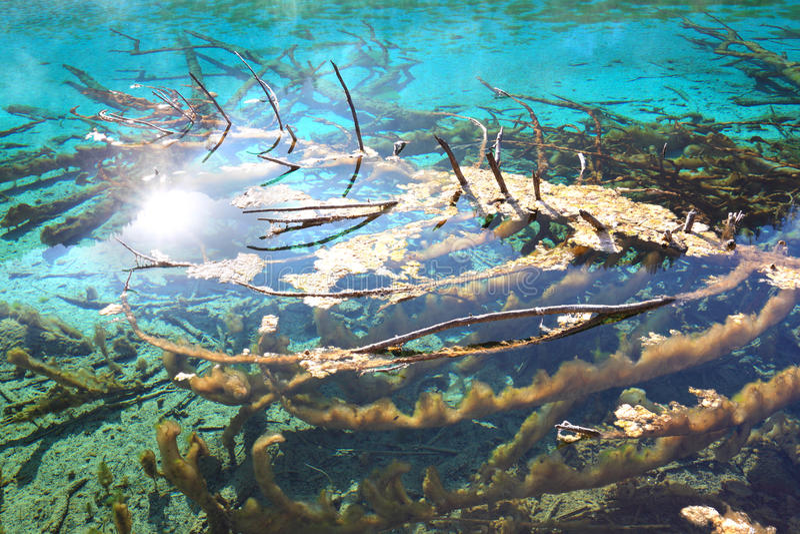 Water views in jiuzhaigou stock image