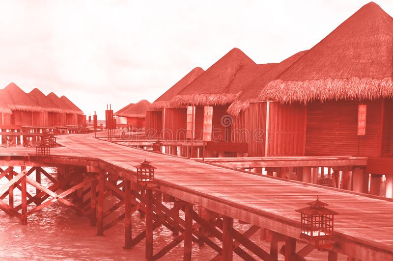 Water villas in the Maldives in colour of the year 2019 Pantone Coral. Water villas in the Maldives in colour of the year 2019 Pantone - Living Coral royalty free stock photo