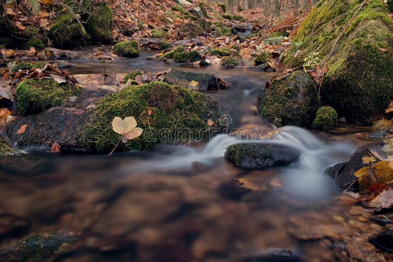 Water in wood. Water wood river stone nature stock photo