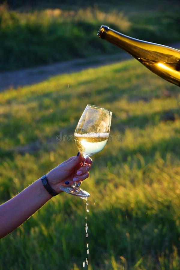 Water, Yellow, Grass, Wine Glass stock image