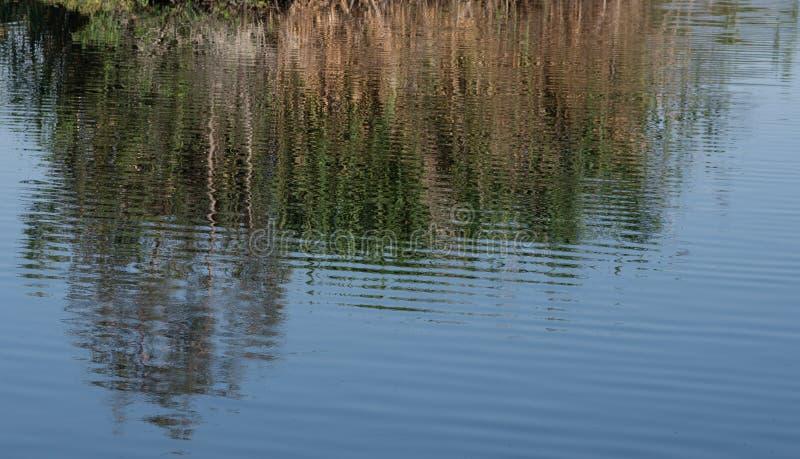 Waterachtergrond gekleurde texturen stock afbeelding